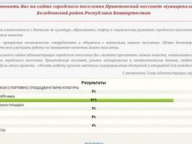 Результаты анкетирования на сайте