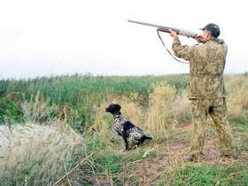 Требуется охотник