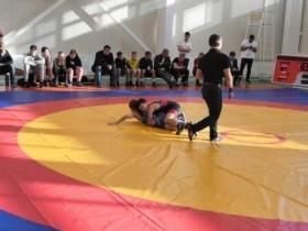 9 открытый турнир по греко-римской борьбе